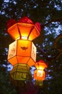 2016Feb26_ChineseLanternFestival-6